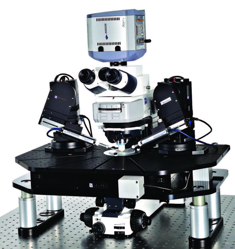 MMTP正置显微镜平台